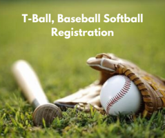 Play Ball: Signups This Month