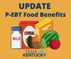 P-EBT Benefit Returns